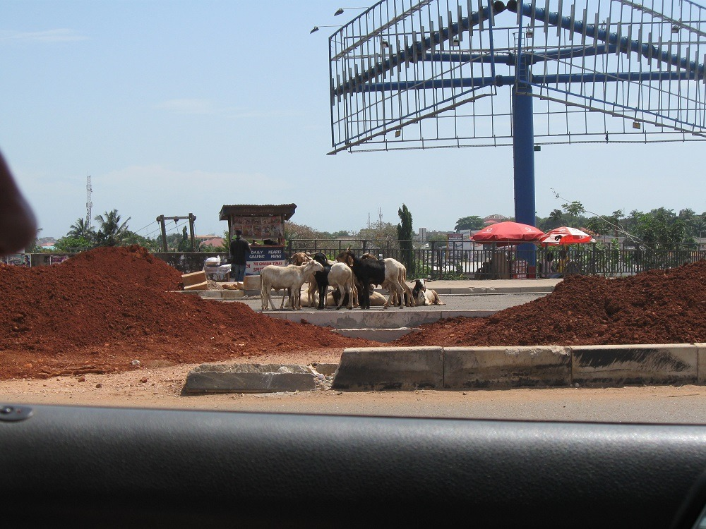 Ghana travel, the things you meet on the road