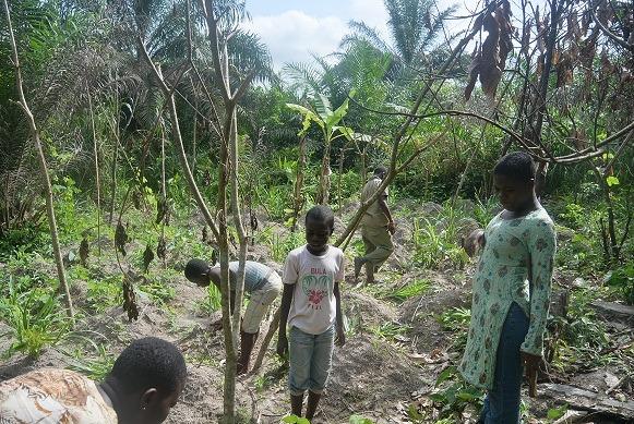 Ghanaian children on the farm, picture taken by volunteer