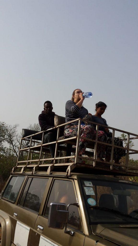 drive safari in Ghana