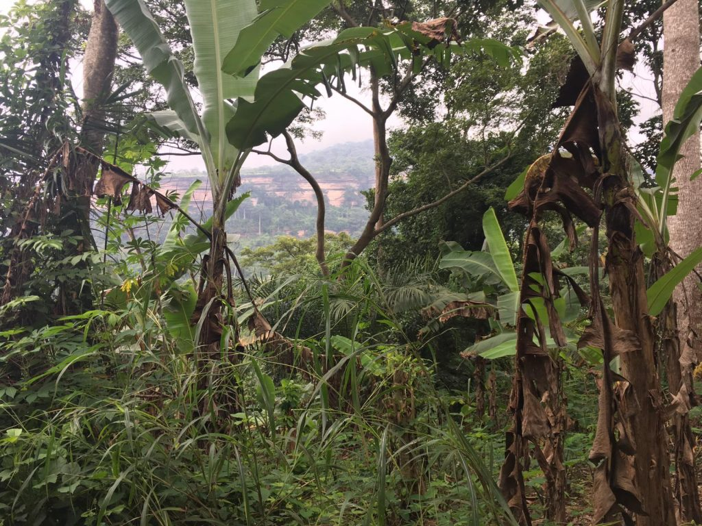 Uitzicht vanaf de Prayer Mountain