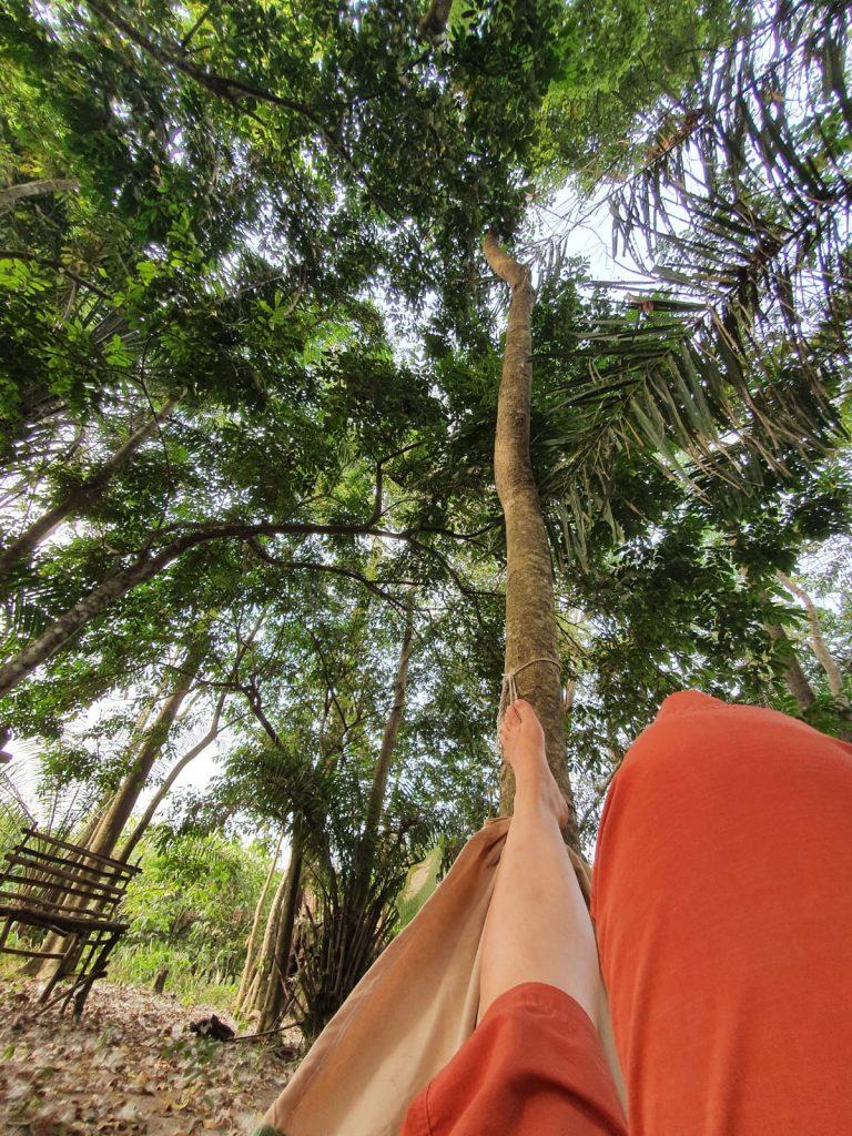 Heerlijk in het bos van Moon en Star guesthouse in de hangmat liggen